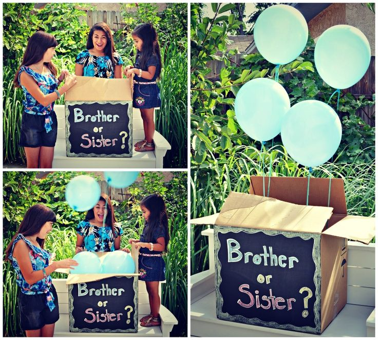 Gender Reveal Photo Ideas for Siblings | Baby Gender Reveal Photo Shoot for…