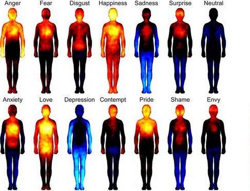 Ogni emozione, o stato d'animo è legato con un organo e ne determina lo stato di salute.Ecco come gioia,dolore,rabbia,ansia ecc influiscono sull' organismo