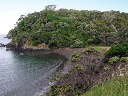 Horseshoe Bay, just north of Tutukākā, is typical of Northland's eastern coastline with its rocky headlands, and sheltered bays and harbours.