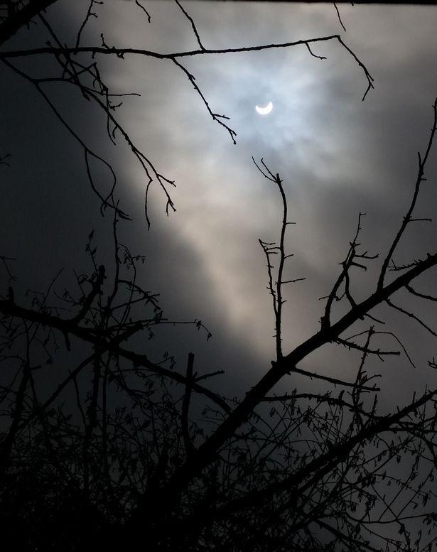solar eclipse. Melanie Hartley, Wiltshire