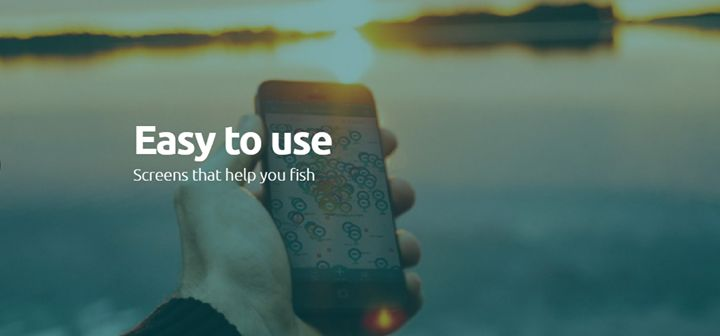 Fishpointer - Live newsfeed