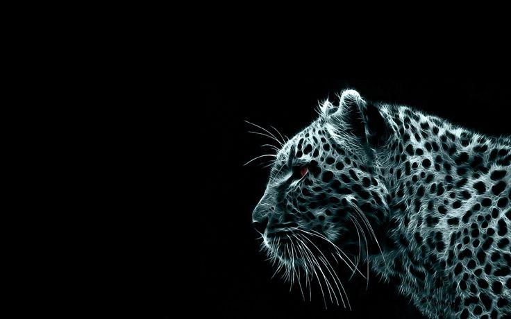 Animal Tiger  Cheetah Mongoose Girl Wallpaper