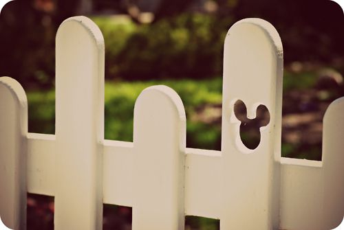 Mickey Fence. Someday, when I get my white picket fence...
