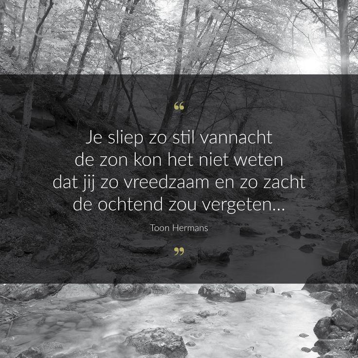 Korte inspiraties in de vorm van een quote of gedicht met betrekking tot rouwen, afscheid nemen en het overlijden van een geliefde. Dit is een kort gedicht van Toon Hermans.
