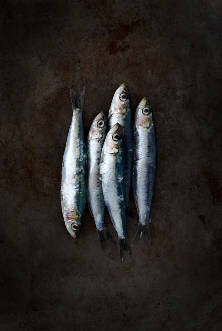 blog post: little silver fishes aka sardines :)