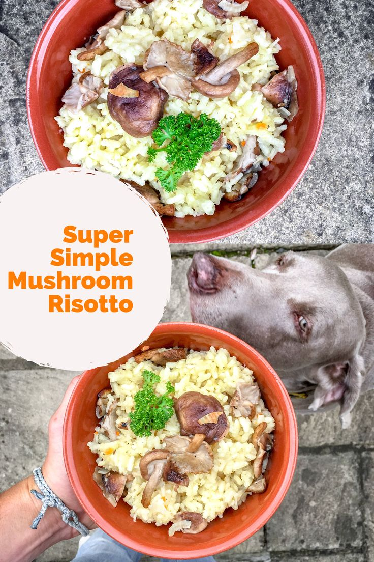 Try my mid-week Super Simple Mushroom Risotto. 30-minute meal, 5 ingredients, tasty leftover food and perfect for the winter.