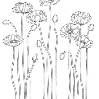 Stampin up : Pleasant Poppies