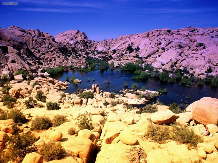 Joshua Tree National Park, California- Camping Trip to come!! extraordinary!!