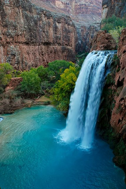 Havasu Falls | Arizona road trip anyone? I just wanna travel!