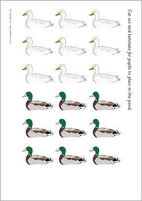 Duck pond addition mats