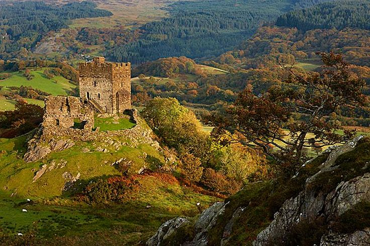 """pagewoman: """" Dolwyddelan Castle, Conwy County, North Wales by David Norton Built in the early 13th century by Llywelyn the Great, Prince of Gwynedd and North Wales """""""