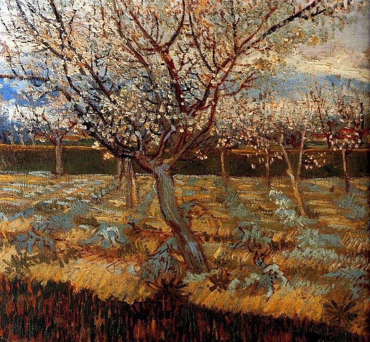 Gogh van Vincent Abricotiers en fleur Sun. Винсент ван Гог . Описание картины, скачать репродукцию.