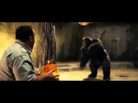 Zookeeper (2011) - [101:54] (youtube.com)