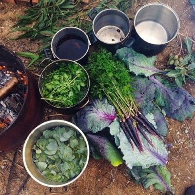 17 best images about primitive skills bushcraft the for Does homesteading still exist