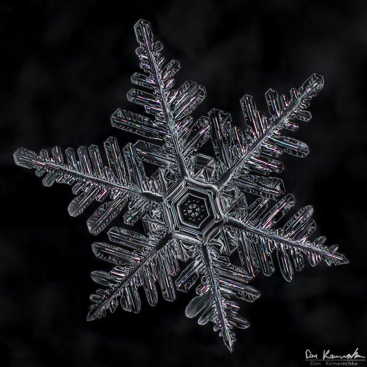 Crystal Clear Snowflake Photos by Don Komarechka - My Modern Metropolis