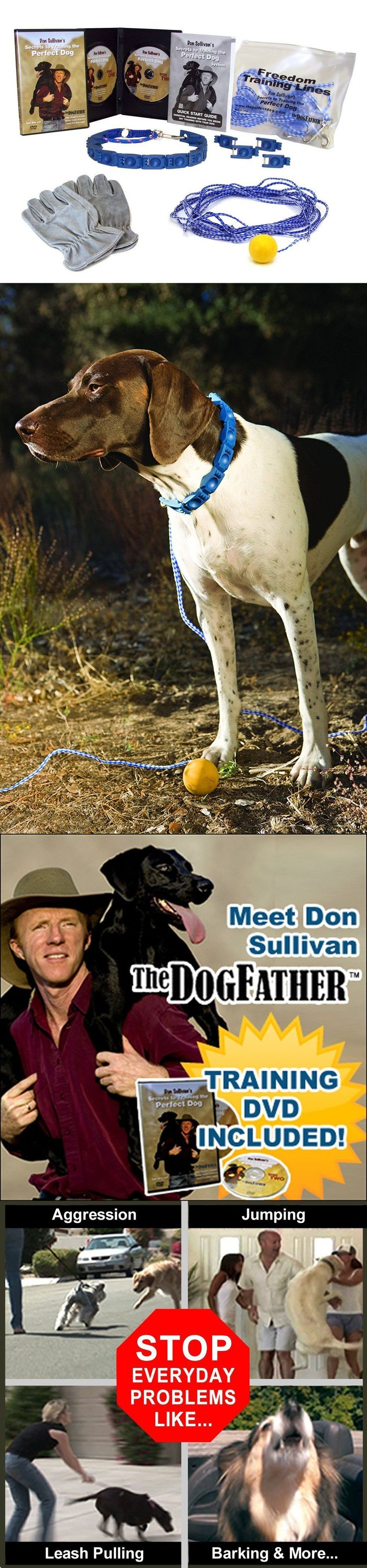 Training Videos and Books 116387: New Don Sullivan Perfect Dog Fast Results Pet Training Package Large Trainer Dvd -> BUY IT NOW ONLY: $80.99 on eBay!