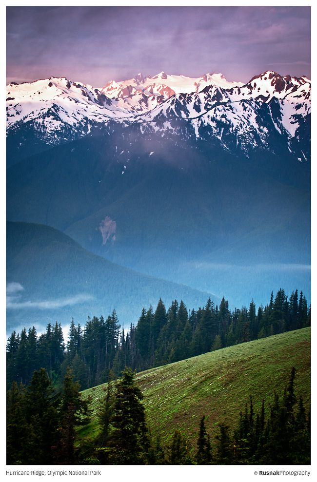 Hurricane Ridge, Olympic National Park, Washington... One of the best places on Earth.