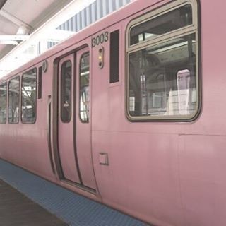 Where in the world is there a pink train station