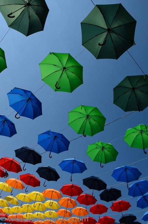 """""""It doesn't matter who you are or what you look like, so long as somebody loves you.""""  - Roald Dahl, """"The Witches"""" #colorfulumbrellas #umbrellasky #umbrellas #diversity #somebodylovesyou #rainbow"""