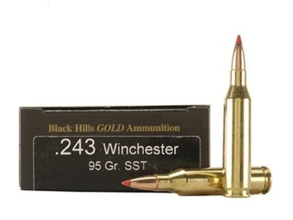 The .243 Winchester is an excellent option for long distance shooting and for hunters and competitors where felt recoil is an issue.