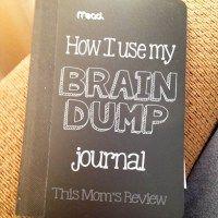 How I Use My Brain Dump Journal