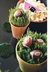 I love wheat grass and use it for everything spring.  This is a great application for Superbowl.