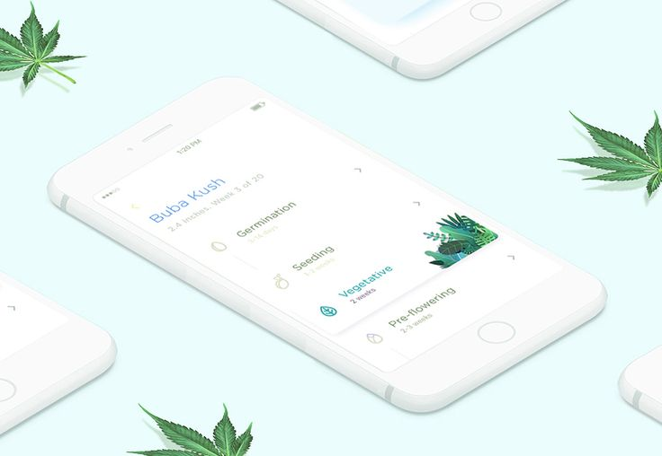 다음 @Behance 프로젝트 확인: \u201cLEAF Growbox Mobile Application\u201d https://www.behance.net/gallery/49445211/LEAF-Growbox-Mobile-Application