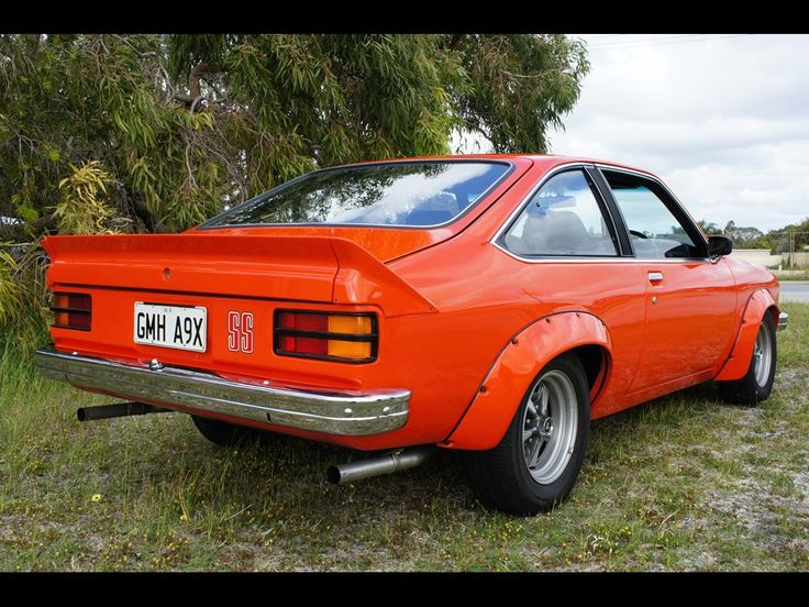 1977 HOLDEN TORANA LX SS A9X Maintenance/restoration of old/vintage vehicles: the material for new cogs/casters/gears/pads could be cast polyamide which I (Cast polyamide) can produce. My contact: tatjana.alic@windowslive.com