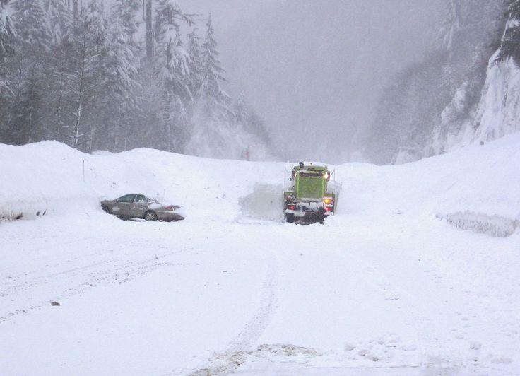 funny snow storm wallpaper - photo #25