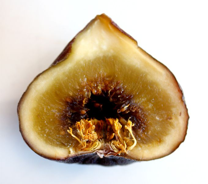Figs for fertility.  Fasinating.