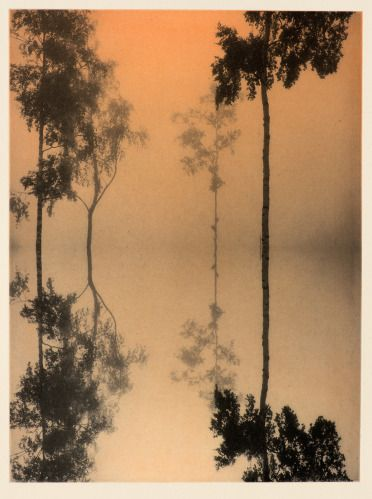 Janne Laine, 2014, Liquid, image 40 x 30 cm