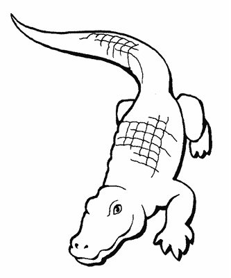 printable crocodile coloring pages - Crocodile Coloring Pages Print