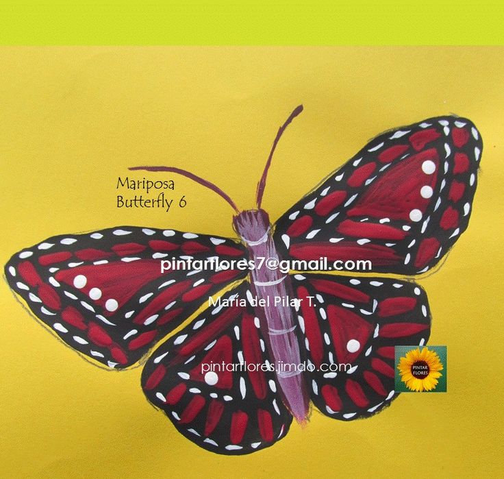 Aprende a pintar mariposas en pintura decorativa.  Canal Pintar flores www.pintarflores.jimdo.com