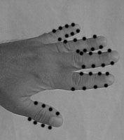 Le mani contengono centri e circuiti di energia in grado di influenzare e modificare aspetti fisici, emozionali, mentali e spirituali. Ecco come usarli
