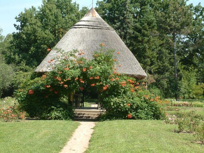 SZEGED ...Botanic Garden, University of Szeged  http://www.iranymagyarorszag.hu/szegedi_tudomanyegyetem_fuveszkert/I303728/kep-1/