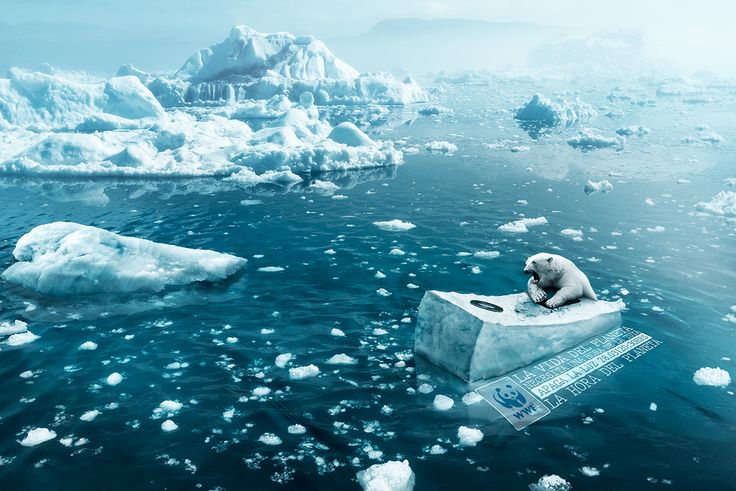 Hora del planeta - WWF on Behance