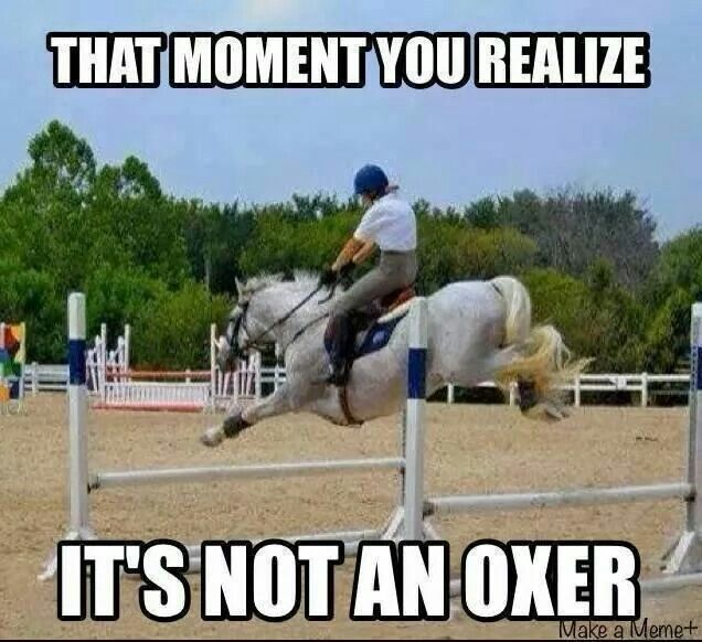 I have had horses jump bounce jumps as oxers and raised ...