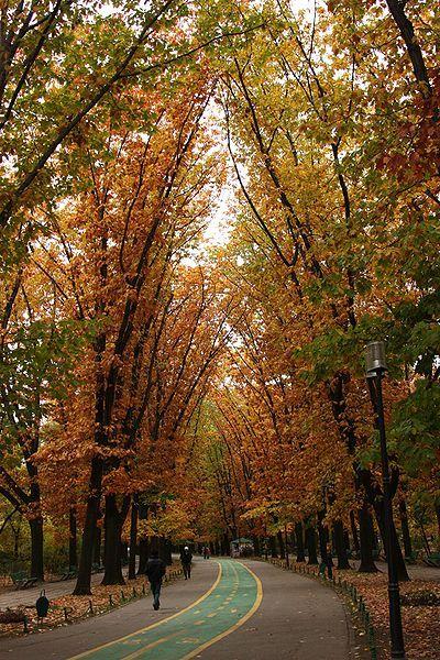 Herastrau Park, Bucharest Romania