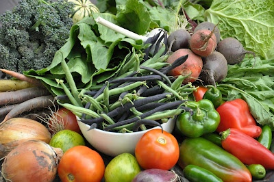 Our CSA basket from Roots and Shoots Farm - Week 10.