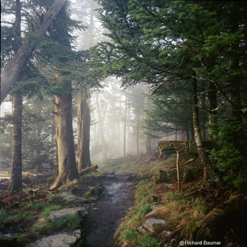 Appalachian Trail, Smoky Mountain National Park