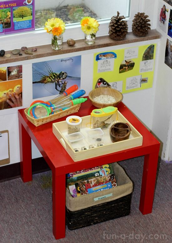 a look at setting up a preschool science center with an insect and plant theme