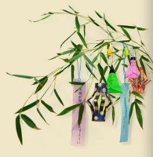tanabata bamboo tree
