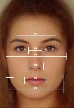 74 best golden ratio images on pinterest drawings sacred most of us dont exactly know the ingredients that make a face beautiful and ccuart Image collections