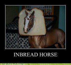 horse pun 5