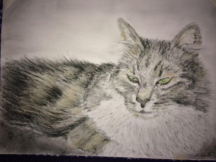 Kočka 2 tužka a pastel od Zuzky Dušánkové