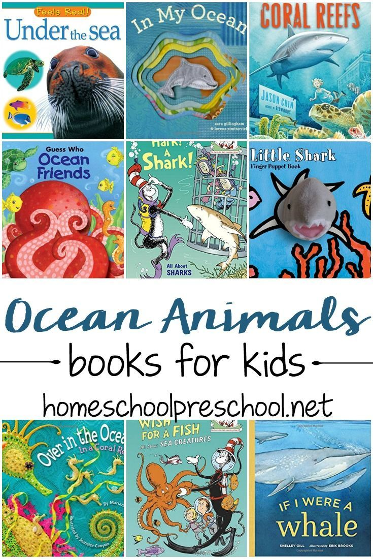27 Amazing Ocean Animal Books For Preschoolers