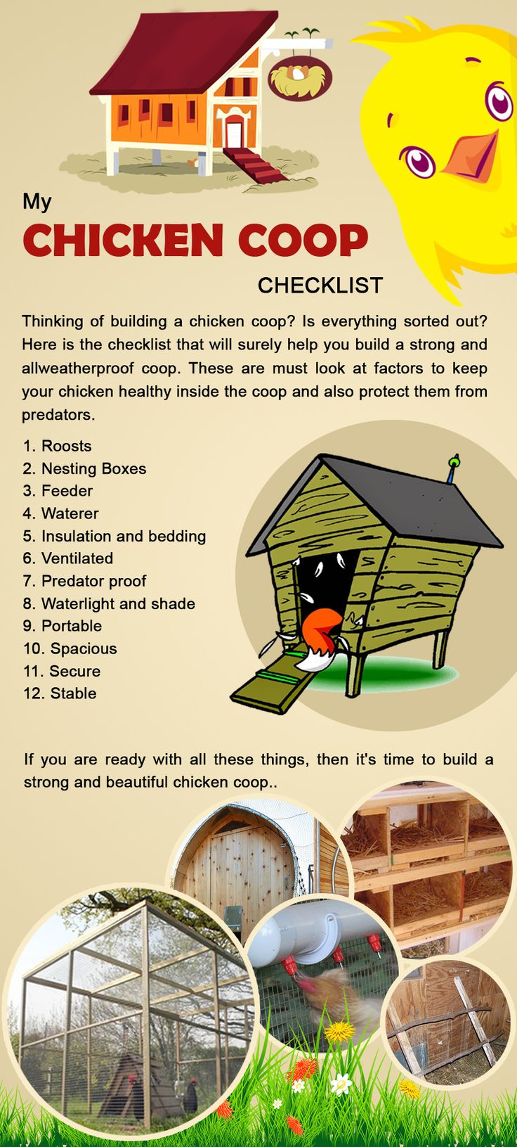 Thinking to buy a chicken coop? We are interested to giving you some important tips that you should consider while purchasing a chicken coop. You should take care about the safety of chickens,the chicken coop should be predator safe, second thing is there should be sufficient space in the coop and there should be good passage for air and light, so you can buy such type of chicken coop with wide range of option only from benedicts group limited at amazing price.