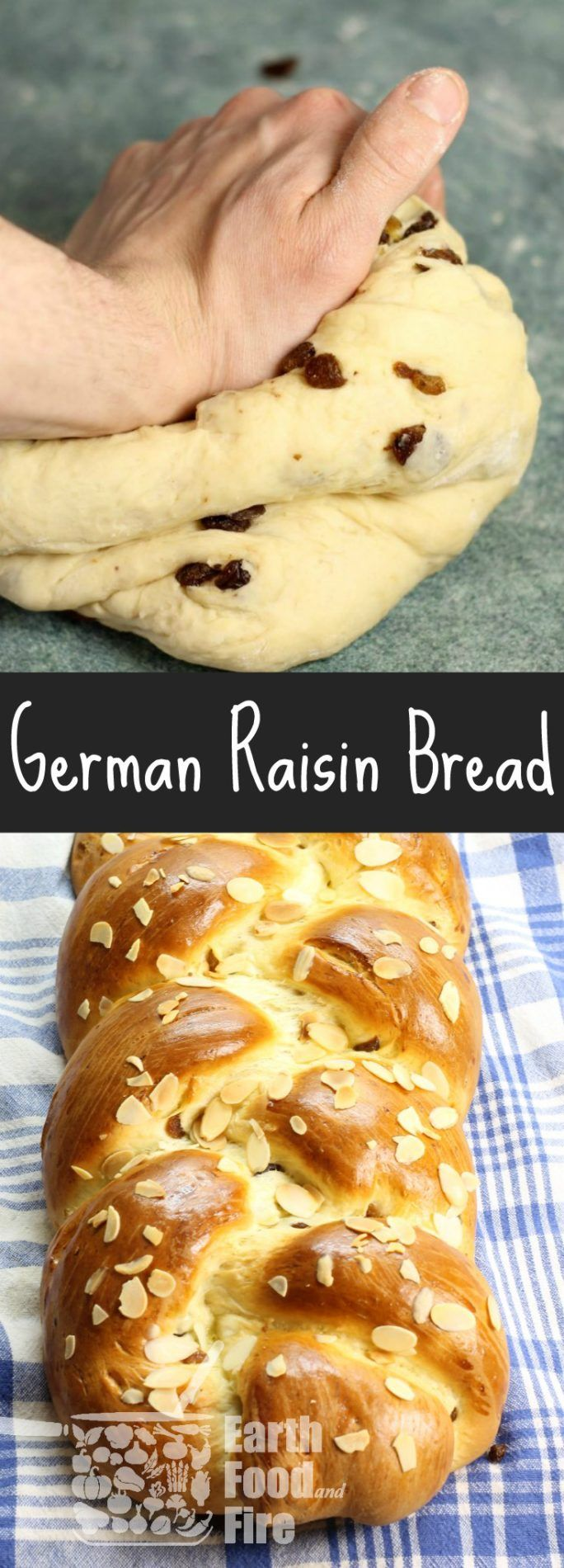 "A deliciously soft Raisin Bread (Rosinenbrot) from Luisa Weiss' ""Classic German Baking"". The perfect loaf of bread to serve for breakfast on Easter! @wednesdaychef via @earthfoodfire"