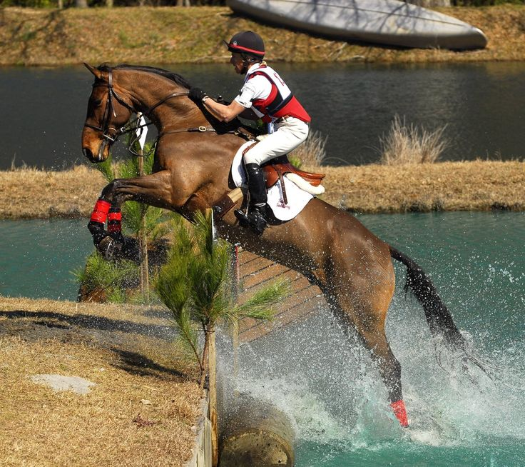 266 best images about other equestrian sports on pinterest
