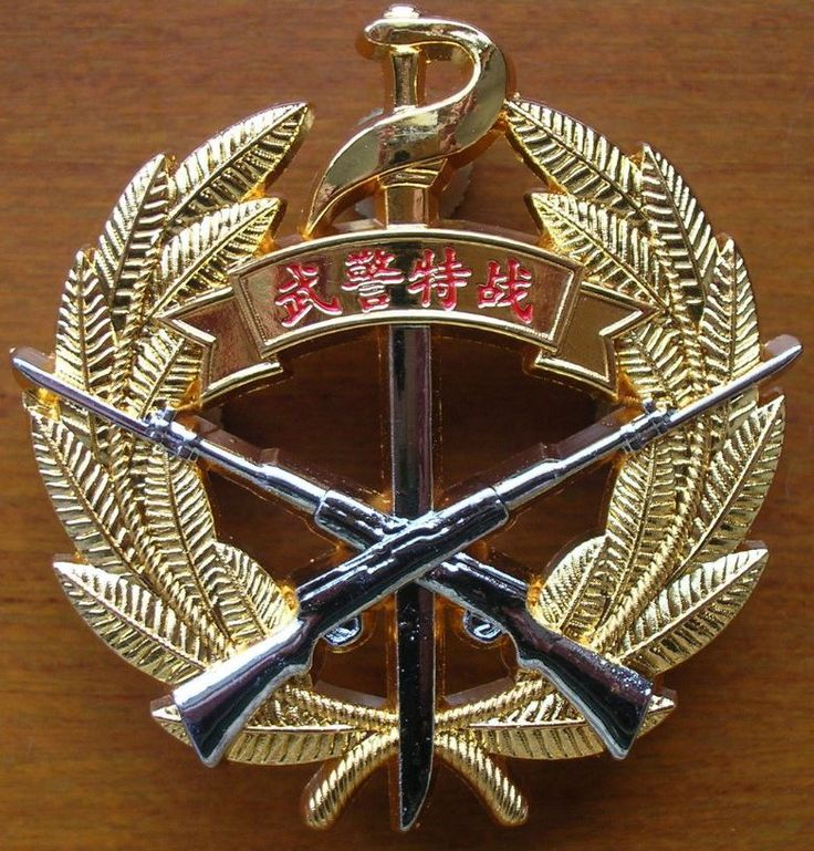 15's series China Armed Police Force (CAPF) Special Forces Metal Badge